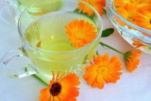 Отвар и цветки календулы